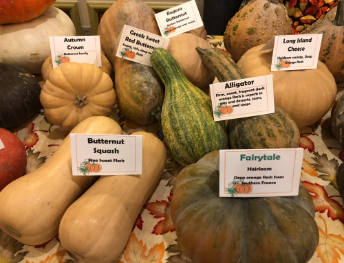 Chefs take home top prizes at annual Zehnder's Squashtoberfest competition