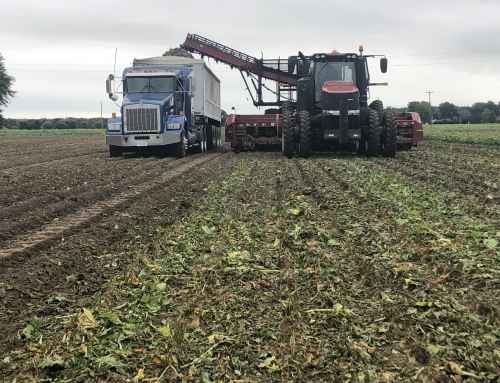 Michigan Sugar Company to begin 2019-20 sugarbeet slicing campaign