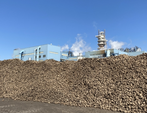 Michigan Sugar announces results from 2019-2020 sugarbeet slicing campaign